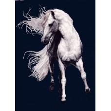 طرح تابلوفرش اسب امپراطور کوچک