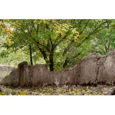 ایران فرش تابلوفرش کوچه باغ گردو