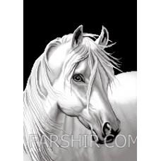 طرح تابلوفرش اسب سفید